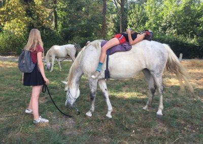 Relaxen te paard